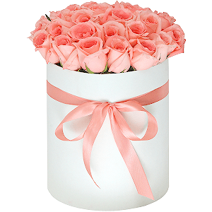 Вологда купить цветы